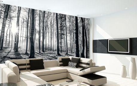 1Wall fototapeta Černobílý les 315x232 cm
