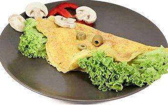 Vyzkoušená proteinová dieta s poštovným v ceně!
