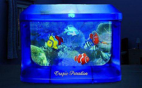 Svíticí akvárium s rybičkami