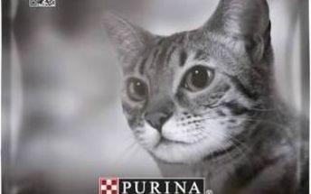 Purina Pro Plan Cat Adult Chicken 10 kg + Doprava zdarma