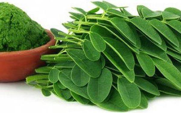 Superpotravina Moringa v prášku – balení 500 g