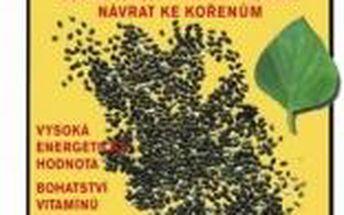 Magie semínek CHIA - léčivé jídlo starých indiánů