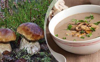 Sadba 8 druhů lesních hub - 2 sady za jedinečnou cenu! Vysaďte si na zahrádce či v květináči své vlastní houby! Výsadba je jednoduchá a díky přiloženému návodu ji zvládne každý!