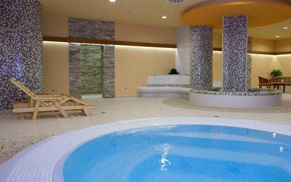Neomezené wellness a polopenze - Hotel Jana****