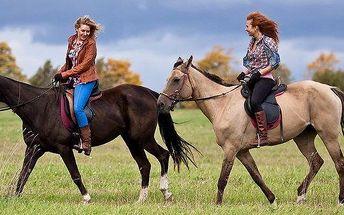 Jízda na koni v krásné přírodě nebo na jízdárně