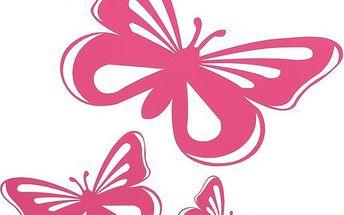 Dekorativní samolepka na auto - motýlek