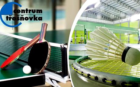 Hodina stolního tenisu nebo badmintonu v centru Třešňovka