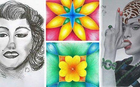 Dvoudenní kurz kreslení oběma hemisférami pro začátečníky i pokročilé nebo kurz kreslení pastelem! Kurzy probíhají v Praze, Brně a Kolíně, na výběr mnoho termínů v týdnu i o víkendu! Naučte se propojit obě mozkové hemisféry a vytvářet tak výjimečná díla,