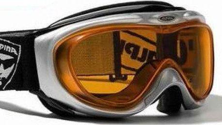 Lyžařské brýle Alpina Comp Optic, černé