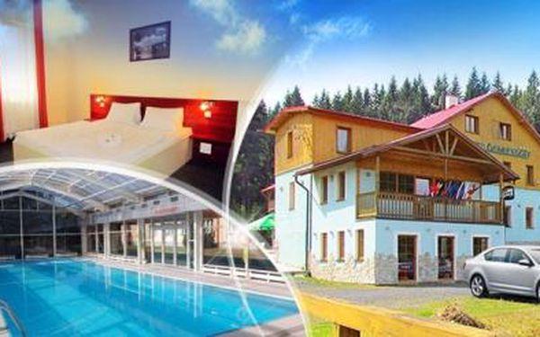 Krušné hory! Wellness pobyt na 3 nebo 6 dní pro dva s polopenzí, bazénem, saunou a vířivkou!