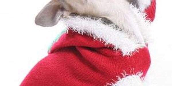 Vánoční oblečky pro pejsky!