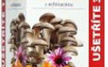 Imunit Hlíva ústřičná 800mg s rakytníkovým olejem a Echinaceou 120 + 60 tablet