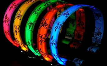 Svítící LED obojek pro domácí mazlíčky - na výběr z 5 barev