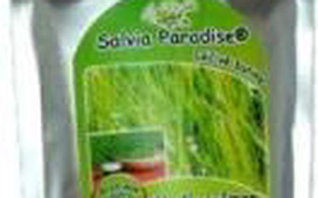 AWA superfoods Mladý zelený ječmen - 100% sušená šťáva 100g
