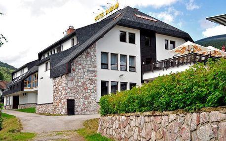 Hotel Aurum - Černý Důl, Česká republika, vlastní doprava, strava dle programu