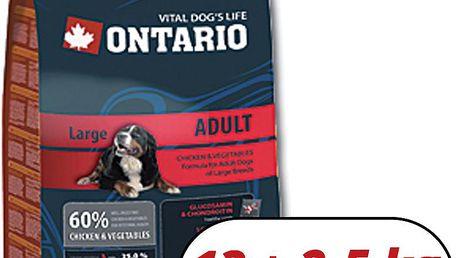 ONTARIO Adult Large Breed 13 kg + 2,5 kg zdarma