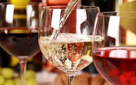 3 až 6 dní pro 2 s degustací vína v Apartmánech nad sklepem ve Velkých Pavlovicích