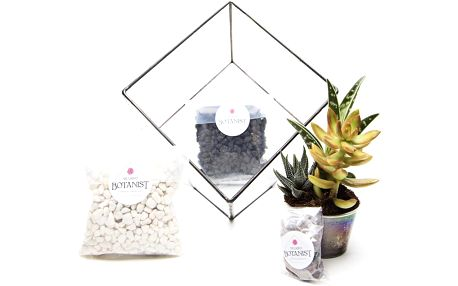Terárium s rostlinami Aztec Cube DIY - doprava zdarma!