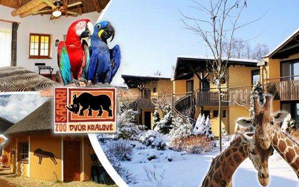 Hotel Safari*** nebo Safari kemp v ZOO Dvůr Králové - platnost až do března! Pobyt pro 2 osoby a dítě do 4 let na 2-3 dny se vstupem do ZOO, průvodcem po ZOO, bowlingem, snídaněmi a nevšedními zážitky! Zvolit si můžete i jedno ze čtyř speciálních menu od