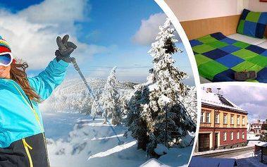 ŠUMAVA - apartmány na 5 nebo 7 dní pro 2 osoby v apartmánovém domě Stará Pošta v centru horského městečka Hartmanice - prostředí seriálu Policie Modrava! Nádherná příroda, skvělé podmínky pro pěší i kolo a v zimě především pro běžky - Šumavská magistrála,