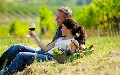 Jižní Morava pro DVA na 3 dny s konzumací vín a polopenzí