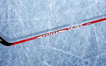 Hokejová kompozitová hůl SALMING Tornado