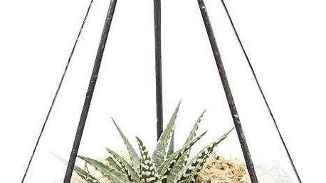 Terárium s rostlinami Jewel
