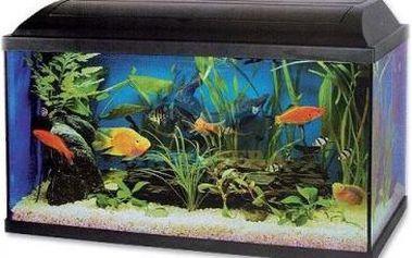 Cat-Gato Akvárium set Pacific 60*30*30cm, žárovka 15W
