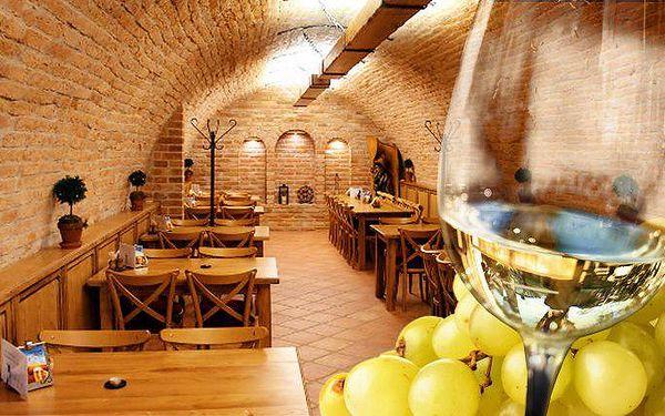 3–5denní pobyt pro 2 s konzumací vína a piva v penzionu Sklep na jižní Moravě