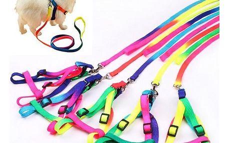 Postroj ve veselých barvách pro menší psy