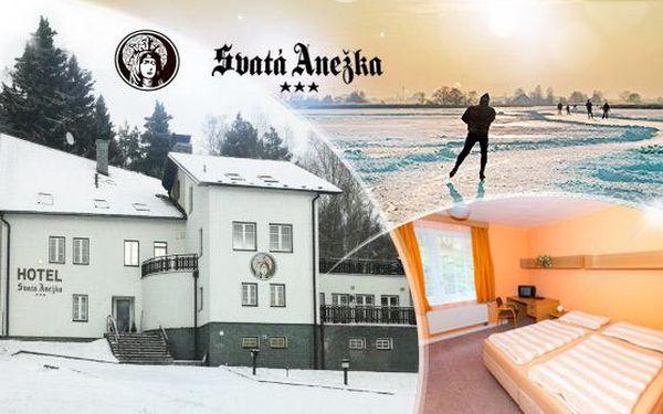 Wellness pobyt 3-5 dní pro dva u jezera Lipno s polopenzí, lahví vína a saunu nebo vířivkou poblíž Ski areálu Hochficht!