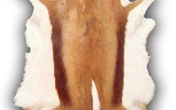 Kožená předložka z antilopy Gacela, 85x100 cm - doprava zdarma!