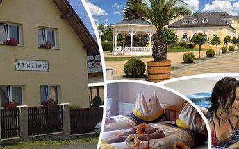 Wellness pobyt pro dva nebo rodinný pobyt pro čtyři osoby v penzionu Žírovice u Františkových lázní.