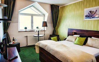 3denní romantický wellness pobyt pro 2 v Parkhotelu Morris**** v Novém Boru