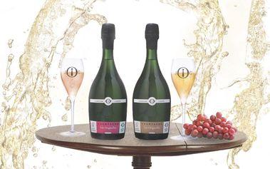 Champagne Julien Chopin Brut & Rose 1er Cru