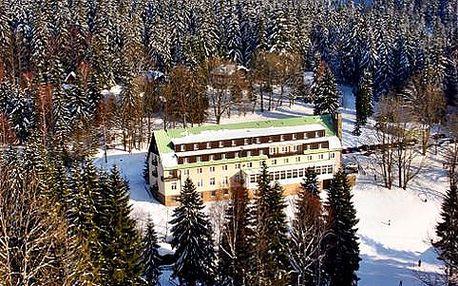 Vánoční pobyt v Železné Rudě v Hotelu Engadin s polopenzí a neomezeným vstupem do sauny + děti do 3 let a 1. dítě do 12 let ZDARMA