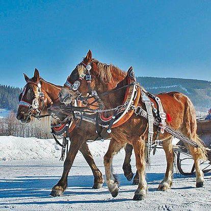 Rodinná zimní dovolená u koní v Beskydech