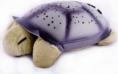 Noční želvička - tmavě zelená