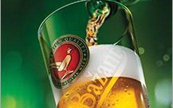 Přijďte si užít 3 půllitry 10° piva značky Zlatý Bažant za akční cenu 55 Kč!