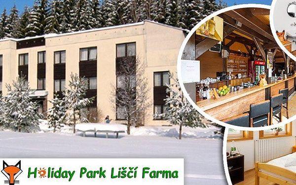 Zimní pobyt pro dva v rodinném hotelu Holiday Park na Liščí farmě s polopenzí a slevami do wellness.