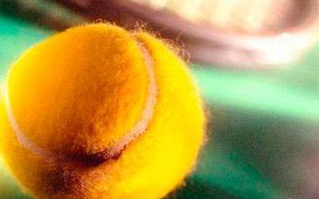 Intenzivní hodinová lekce tenisu pod vedením zkušeného trenéra včetně pronájmu kurtu v hale a míčů.