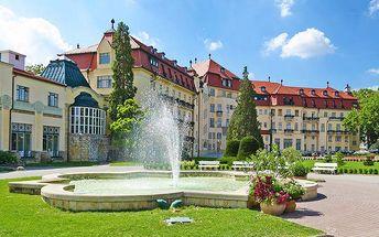3 nebo 4denní pobyt pro 2 se snídaní i polopenzí v penzionu Zacher v Piešťanech