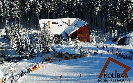 Ubytování s polopenzí a vstupem do bazénu u dolní stanice lanové dráhy Ski Area Mariánské Lázně s platností do 27. 4. 2016