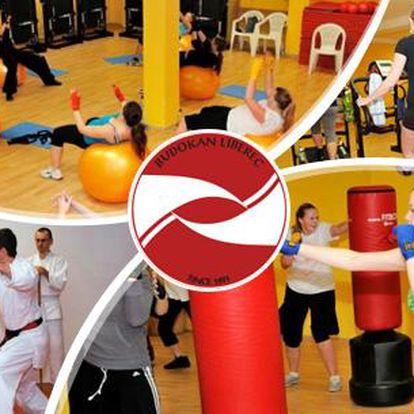 Měsíční permanentka do sportovního centra Budokan! Fitbox, Alpinning, Stretching, Body forming, Bojové umění a další!