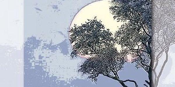 Pilcherová Rosamunde: Zimní slunovrat