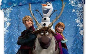 Jerry Fabrics Povlečení Ledové království (Frozen) bavlna 140 x 200, 70 x 90 cm