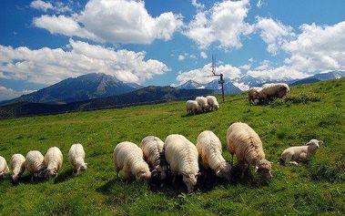 Belianské Tatry v penzionu s polopenzí