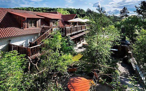 2–4denní relax v Praze v apartmánech Černý Kohout pro 2 se snídaní