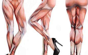 Legíny s motivem lidských svalů