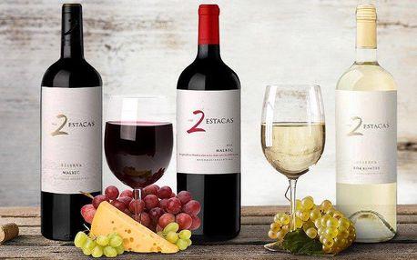 Vynikající argentinská vína z vinařství Bodega Los Toneles